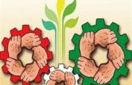 مالیات بر ارزش افزوده موجب توسعه پایدار کشور می شود